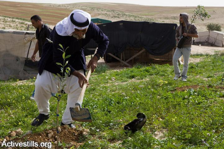 , The Prawer Plan Made Law: The Further Plight Of The Negev Bedouin