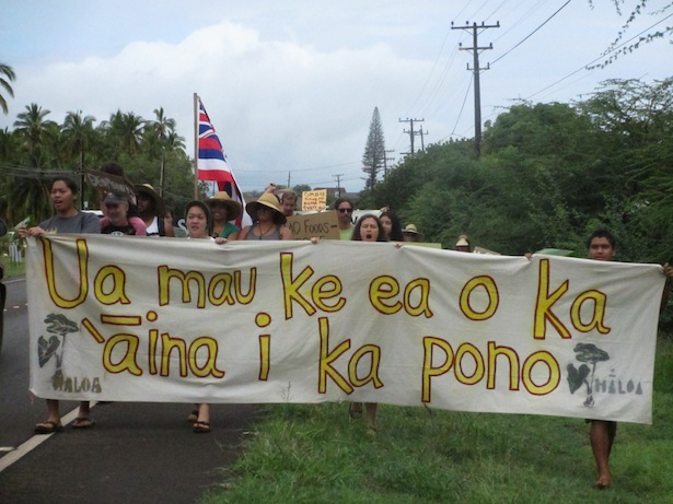 , Defending Hawaii from the world's largest biotech chemical corporations