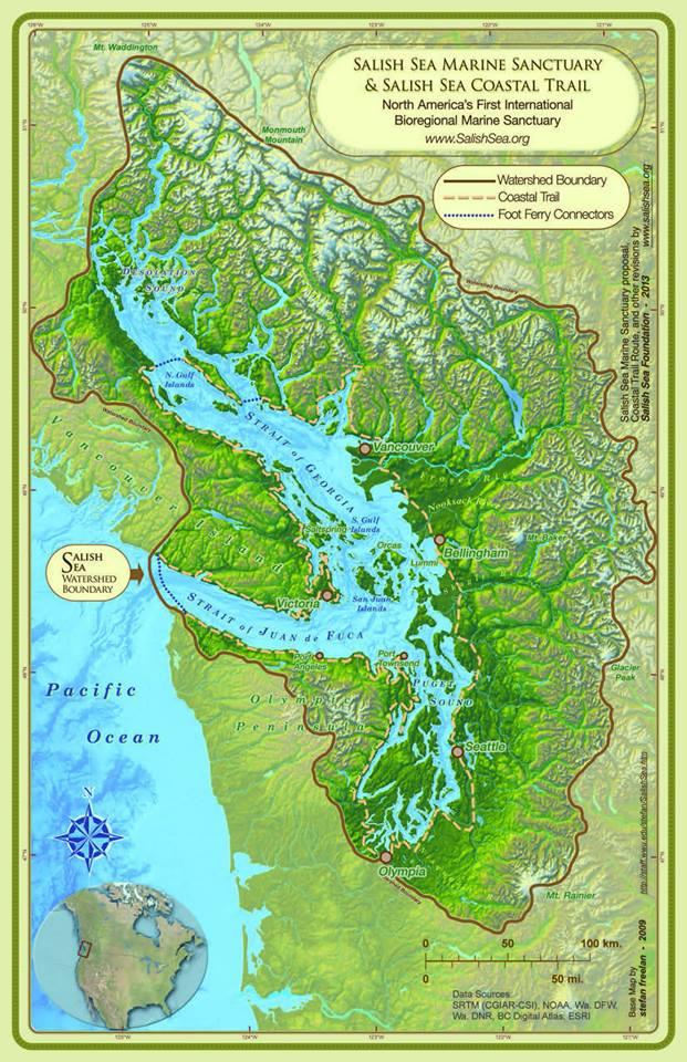 Salish Sea Marine Sanctuary