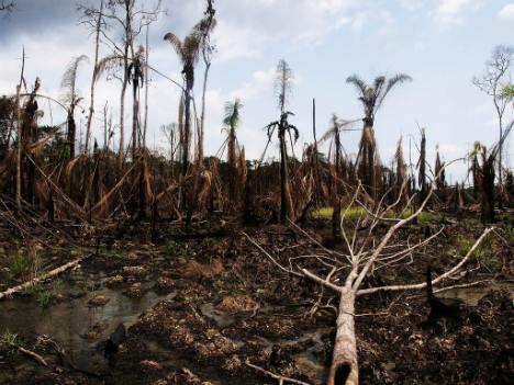 Niger Delta oil disaster (Photo by Sosialistisk Ungdom - SU)