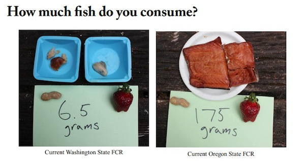 Washington State's recommended fish consumption rates boil down to just 6.7 grams per day per resident, or one eight-ounce fillet per month.In contrast, Oregon's rate to determine how much contamination is allowable in its waters assumes a 175-gram-per-day consumption rate, or about 24 eight-ounce fillets per month.