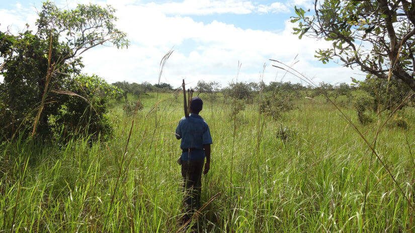 Going off to hunt on the grasslands of Southern Aru