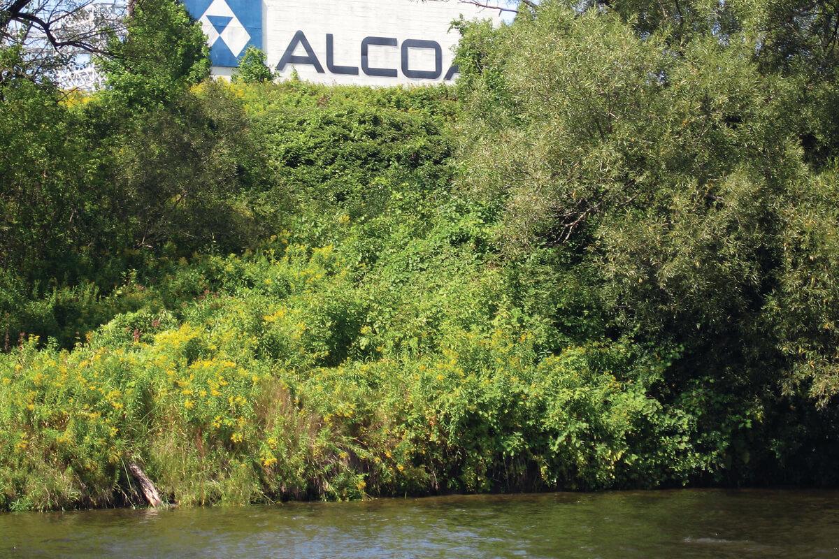 alcoa_aluminum_superfund_site-noaa