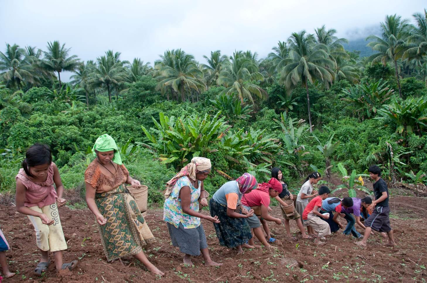 A group of indigenous Pala'wan planting upland rice in the Municipality of Brooke's Point.