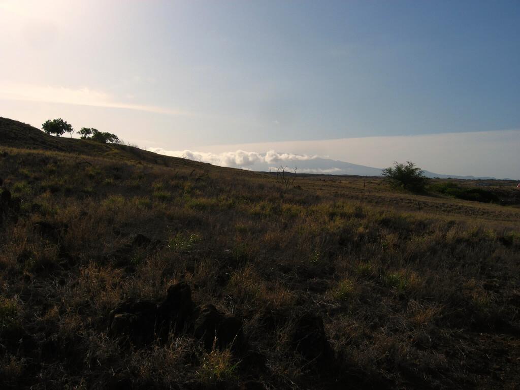 , Hawaii Gov. announces construction stand down on sacred Mauna Kea