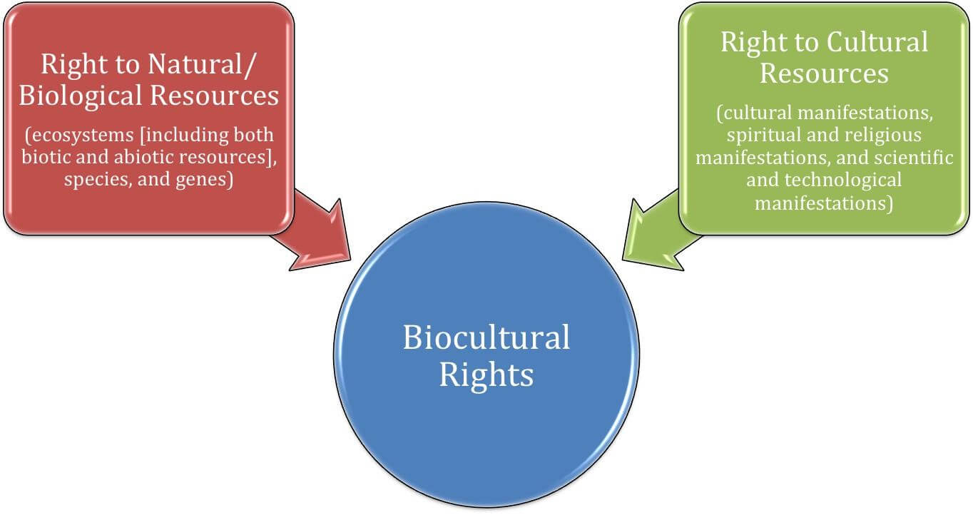 Figure 1. Conceptualization of biocultural rights.