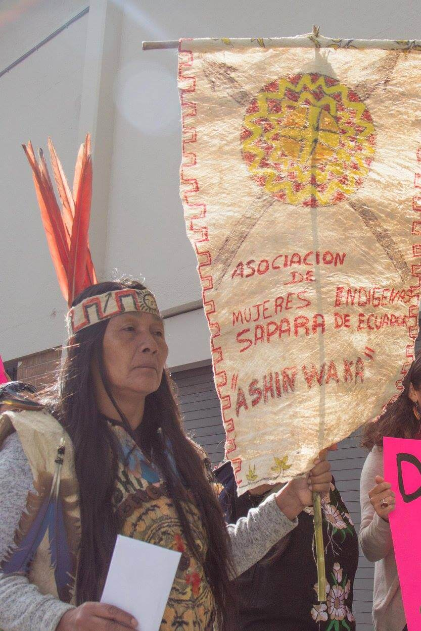 , The Sápara Nation vs. The Slimy Oil Mungia