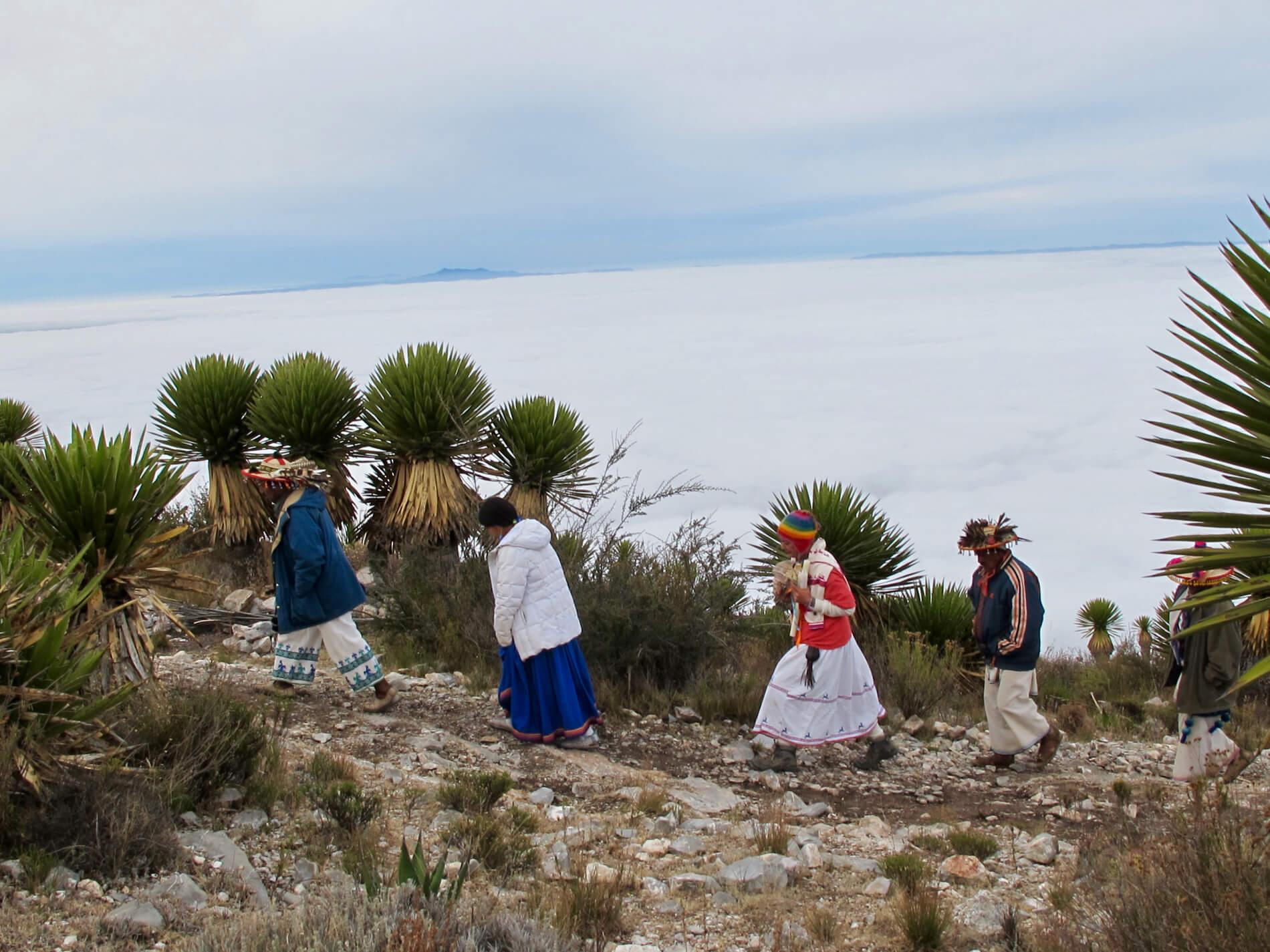 , Medicina, cultura Wixárika bajo asedio: Guardando lo sagrado