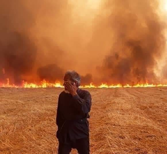 Crop fires target local farmers