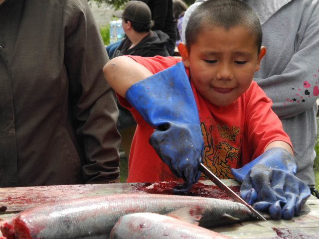 Youth cutting salmon at the Curyung Tribal Culture Camp