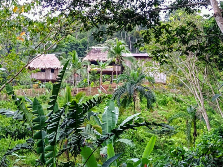 The Naso community of Kuñ Kjing, Naso ancestral lands, Panamá