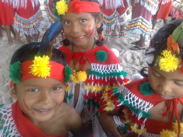 issues analysis indigenous people 2 essay Select one essay question from each of the sections below for a total of two essays each of these two essays should be between 3 -4 pages in length (approximately 750 – 1000 words) your reply should state a single thesis, and your explanation should be based on analysis and evidence.