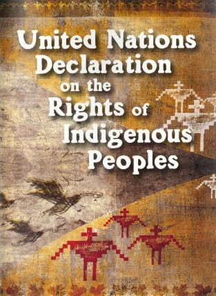 Voting Rights >> Tell the US to Endorse the UN Declaration on Indigenous Rights