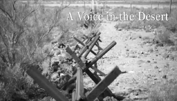 a voice in the desert