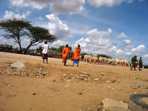 Residents of Archer's Post watch helplessly as police take away their cattle and their economy